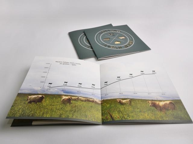 Beef cattle breeds brochure design