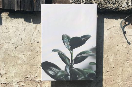 Foto gleznas druka