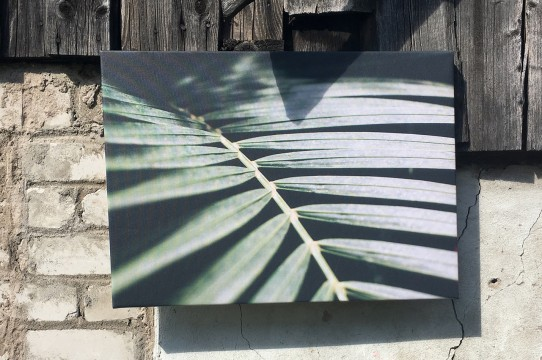 foto gleznas izgatavošana
